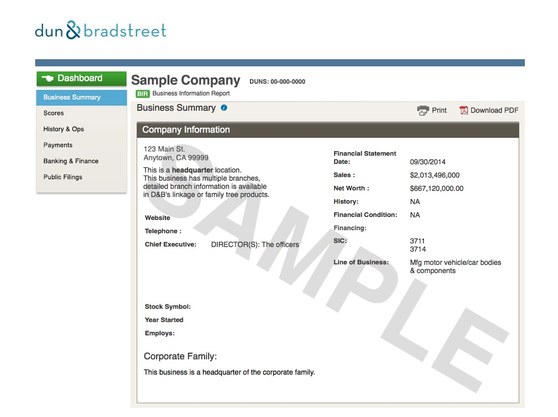 Business Information Report sample report