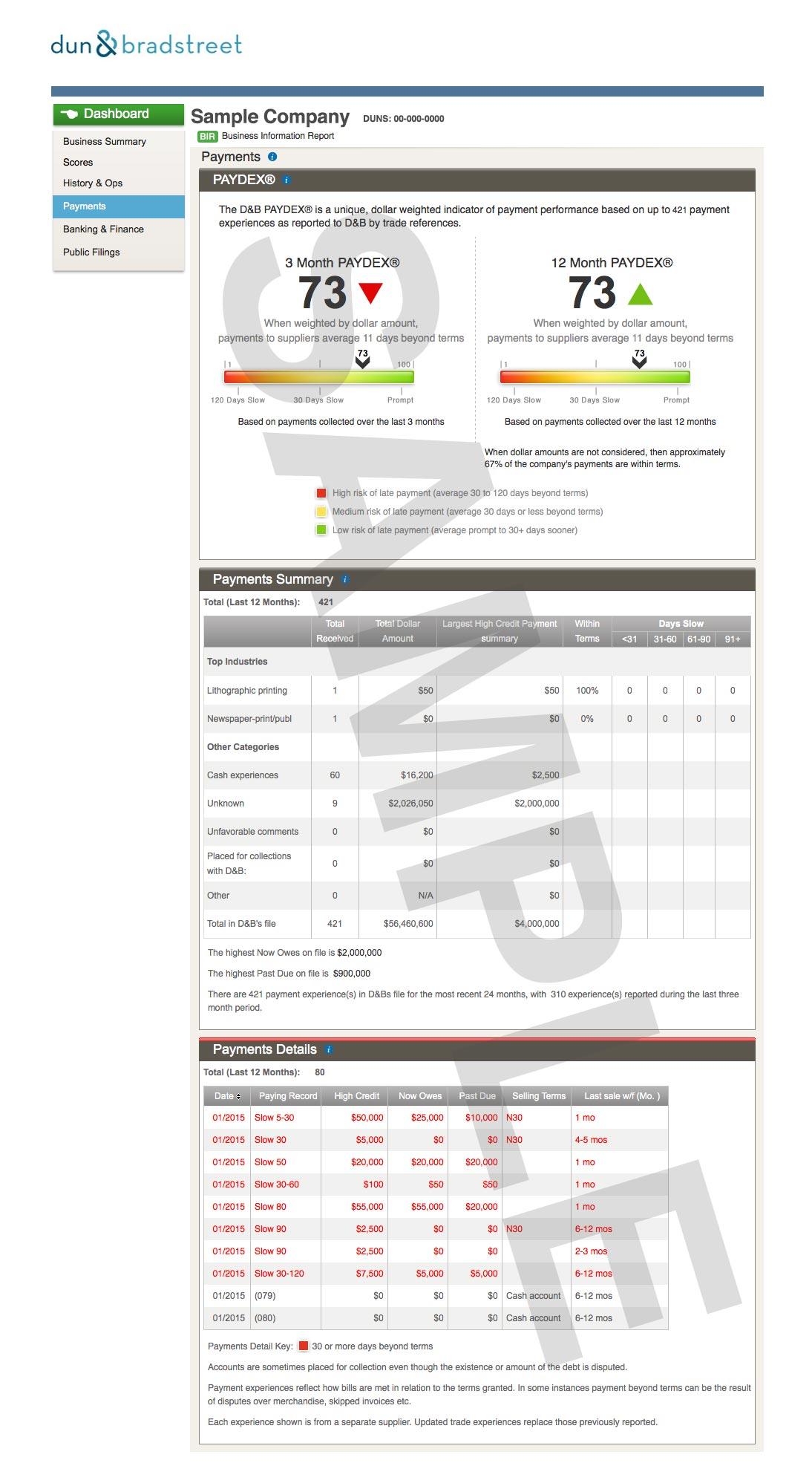 BIR_sample_reportB_REV2